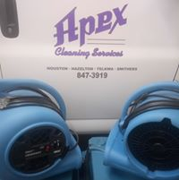 Apex Cleaning Services logo