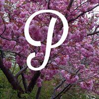 Palmeros logo