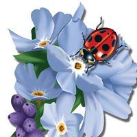 Ladybug Wellness logo