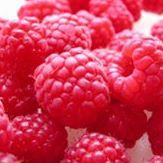 Sweder Berries U-Pick logo