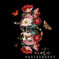 Aiota Photography logo
