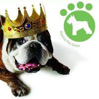 Rejoice Pet Salon logo