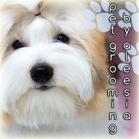 Fluff That - Grooming by Aleesia logo