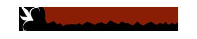 Hyperfocus Photography logo