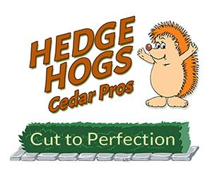 Hedgehogs Cedar Pros logo