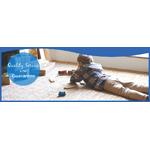 Carpet Doctor logo