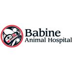 Babine Animal Hospital logo