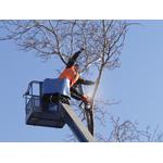Sechelt Tree Service logo