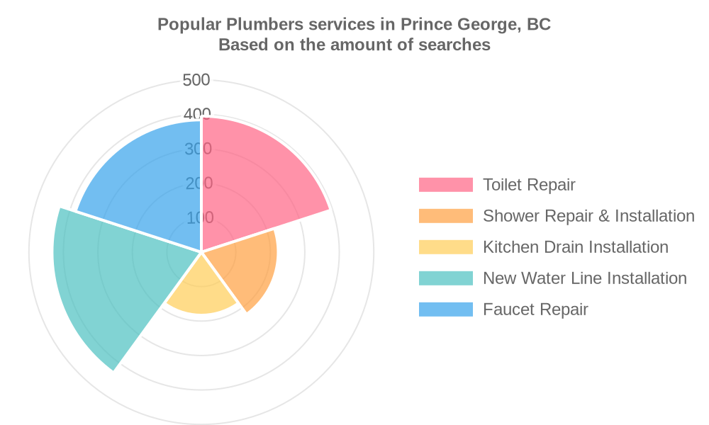 Popular services provided by plumbers in Prince George, BC