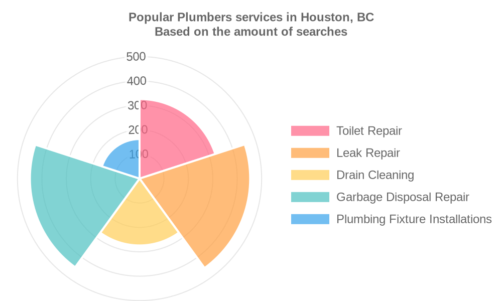 Popular services provided by plumbers in Houston, BC