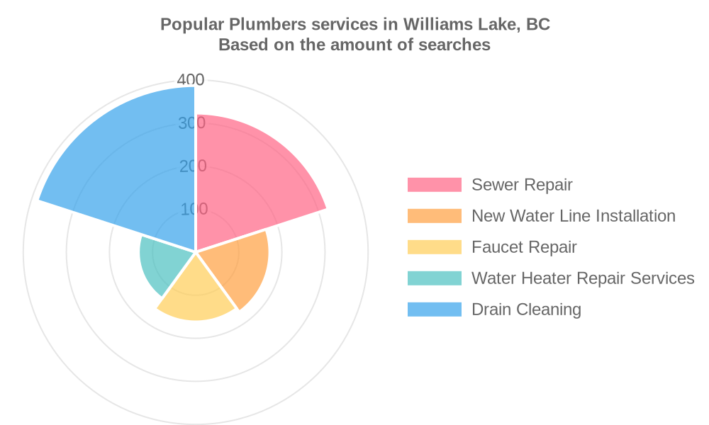 Popular services provided by plumbers in Williams Lake, BC
