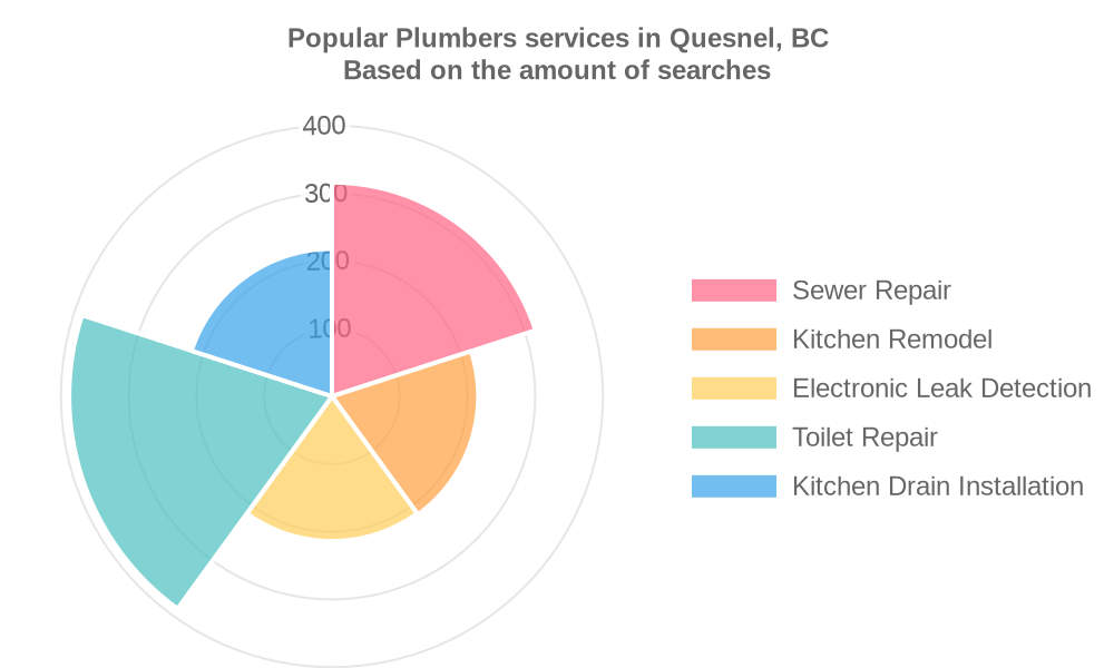 Popular services provided by plumbers in Quesnel, BC