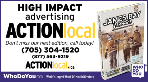 Yellow Pages Ad of Action Local
